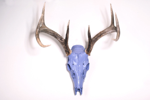 blueberry-whitetail-deer
