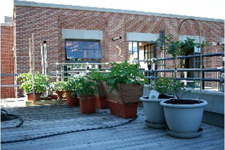 sharon-kitchens-deck-brick-building