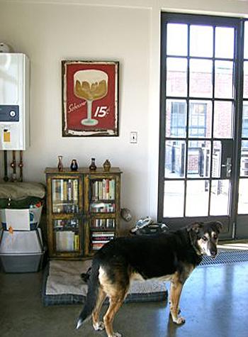 sharon-kitchens-doggie