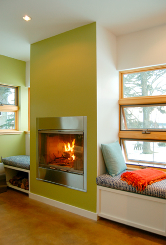 Contemporary Stainless Steel Wood Burning Fireplace