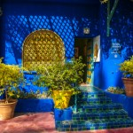 Design Diary: A Boston Patio Inspired by Majorelle Gardens