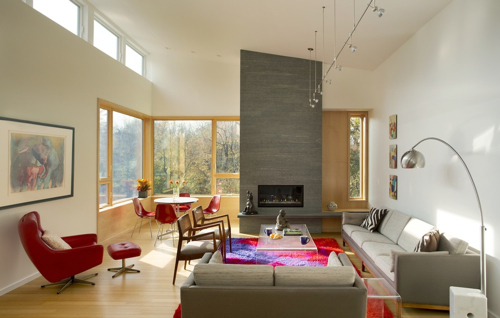 Design Diary Contemporary Home In Historic Modernist
