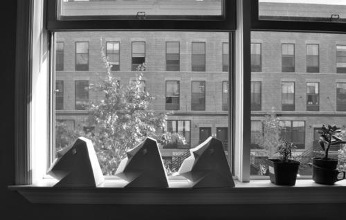 grayson-on-windowsill
