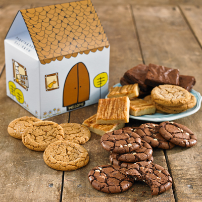 brownies-cookies-house-gift-lrg