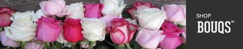 Send Fresh Flowers Romantic Flowers Online