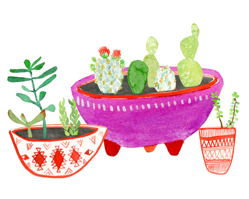 lingsay-gardner-cactus-planters