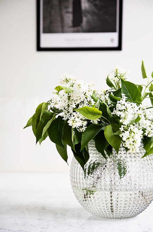 white-lilacs-in-glass-bubble-vase