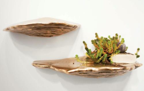 erin-sullivan-mushroom-shelf
