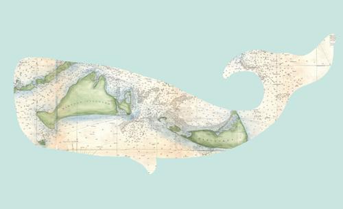 whale-emily-lankiewicz
