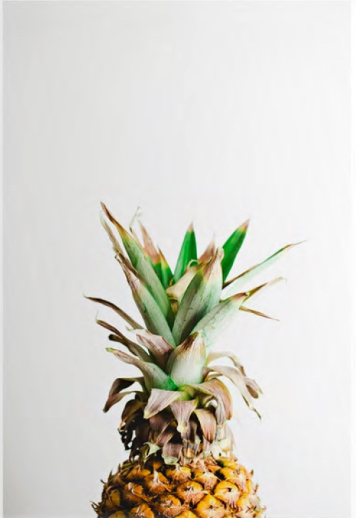 minted-x-west-elm-pineapple