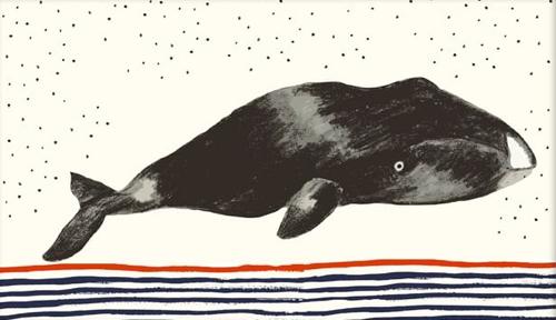 Whale Illustration Artwork