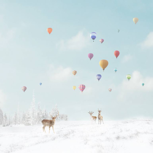 Affordable Artwork Snowy Landscape Photo With Hot Air Balloons