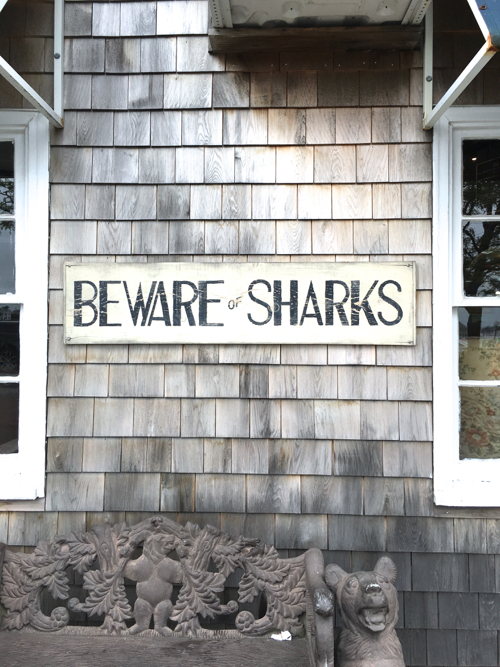 Beware of Sharks Sign On Martha's Vineyard
