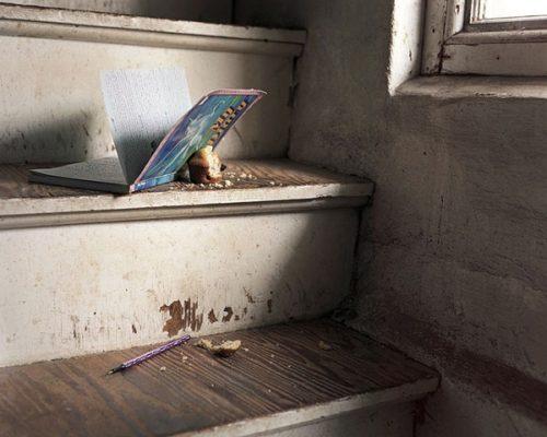 Boston Photographer Anastasia Cazabon Diary, Love and Rivalry