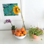 Sunday Bouquet: Still Life with Sunflower and Mandarin Oranges