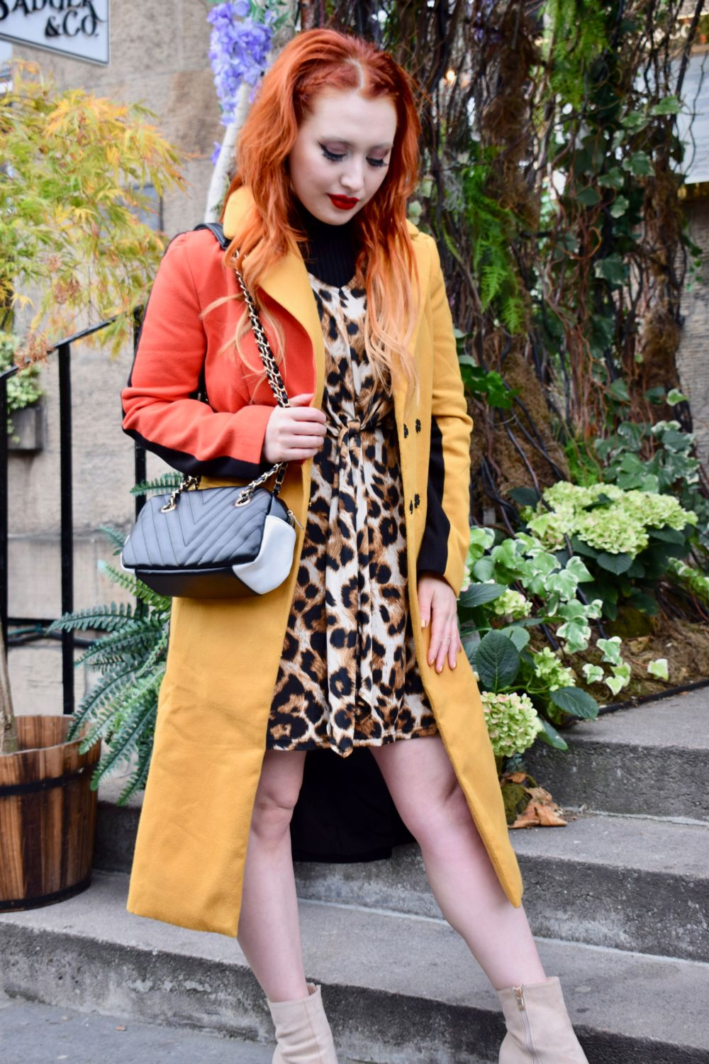 Edinburgh blogger Twenty-Something City wears colourblock coat and leopard dress at Badger and Co