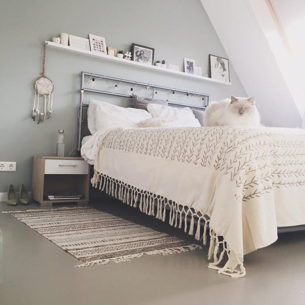 ragdoll bed