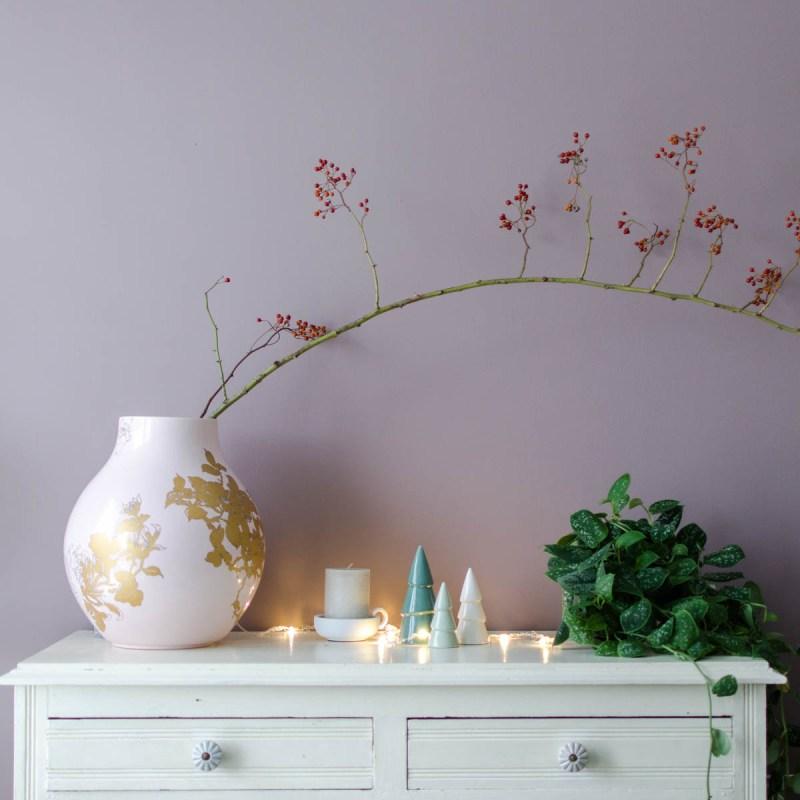 Kerstverlichting rozenbottel