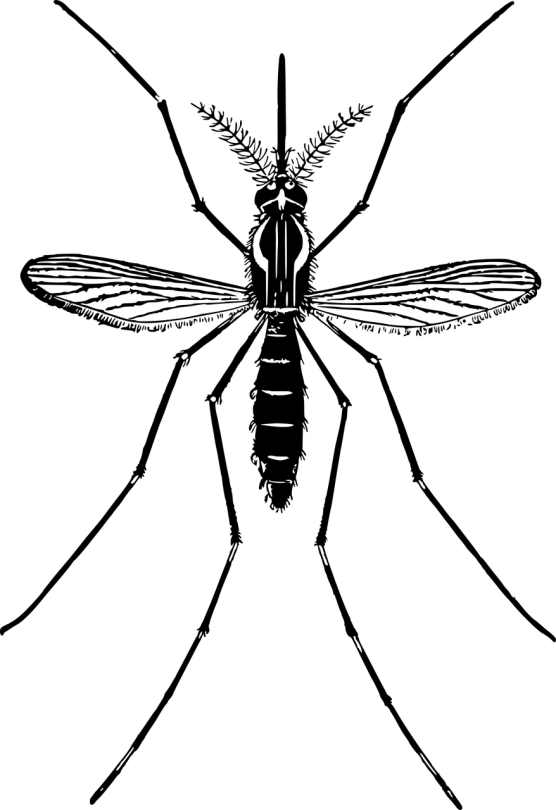 Duux Aura Mosquito Trap muggenvanger
