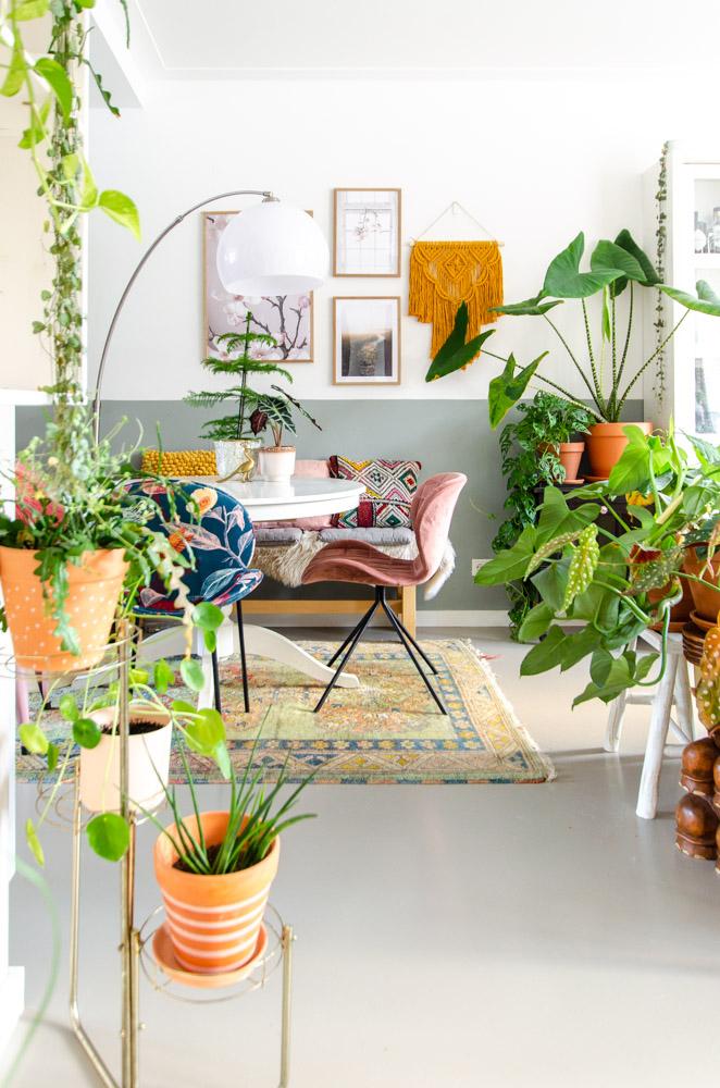 kamerplanten vloerverwarming