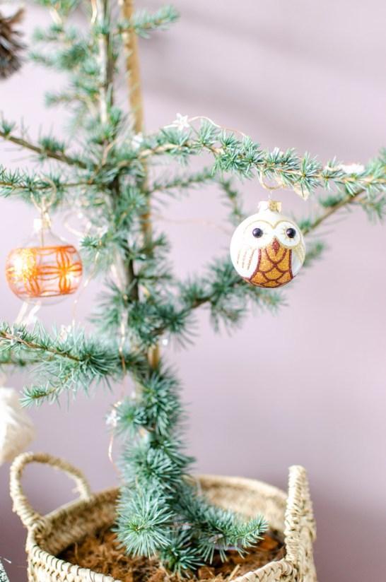 ceder boompje als kerstboom