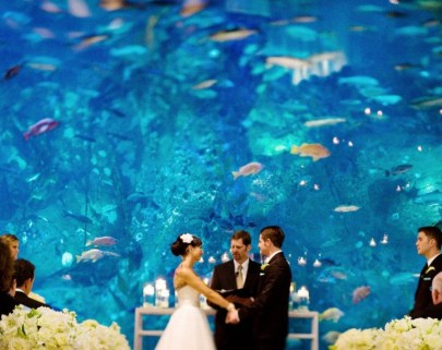 Creative And Fun Wedding day Reception Backdrops You Like Ideas 9