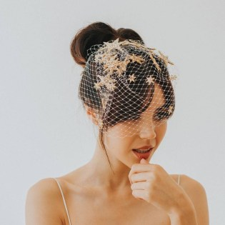50 Blusher Veils and Bridcage for Brides Ideas 43