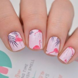 40 Cute Flamingo Themed Nail Art Ideas 6