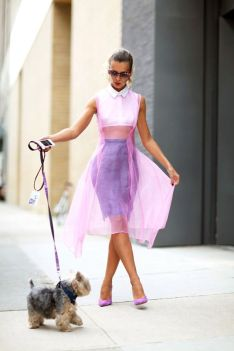 50 Organza Outfits You Should to Try Ideas 15