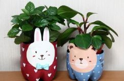 50 Ways to Reuse Plastic Bottles to Cute Planters Ideas 2