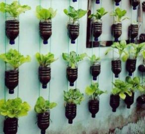 50 Ways to Reuse Plastic Bottles to Cute Planters Ideas 29