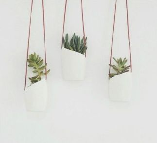 50 Ways to Reuse Plastic Bottles to Cute Planters Ideas 3