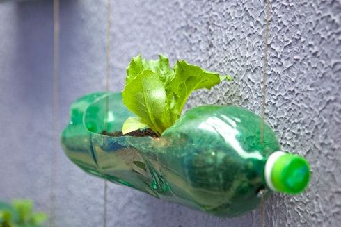 50 Ways to Reuse Plastic Bottles to Cute Planters Ideas 39