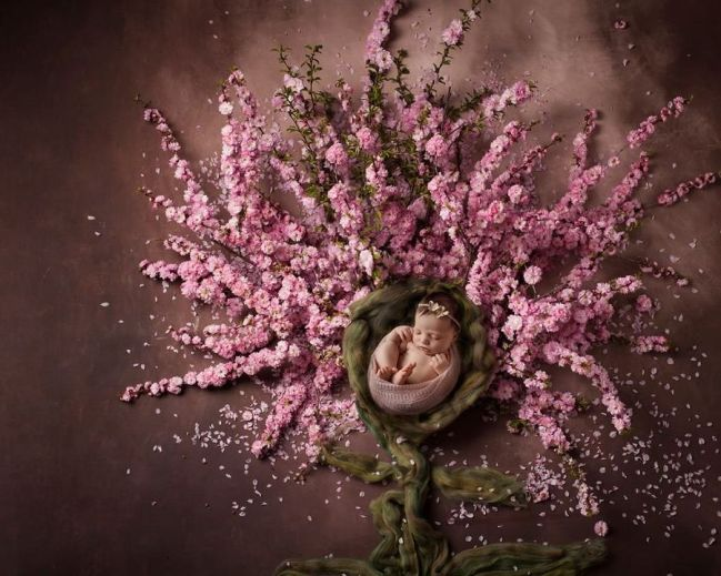50 Cute Newborn Photos for Baby Girl Ideas 17
