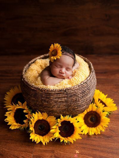 50 Cute Newborn Photos for Baby Girl Ideas 19