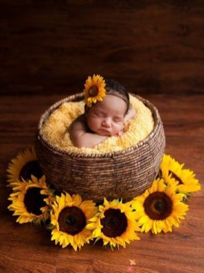 50 Cute Newborn Photos for Baby Girl Ideas 19