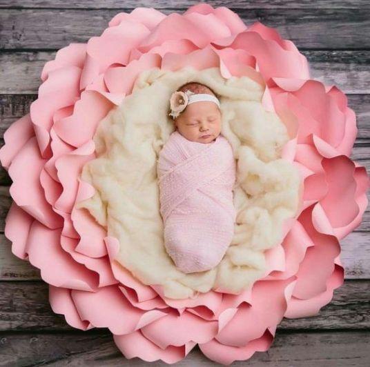 50 Cute Newborn Photos for Baby Girl Ideas 37