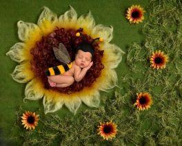 50 Cute Newborn Photos for Baby Girl Ideas 46