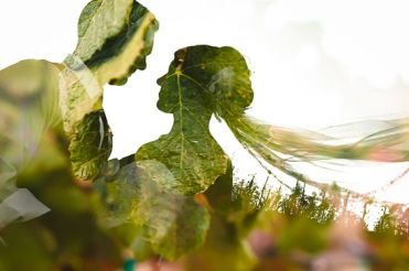 50 Romantic Wedding Double Exposure Photos Ideas 31