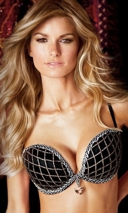 https://i1.wp.com/stylefrizz.com/img/marisa-miller-diamonds-fantasy-bra-victorias-secret.jpg