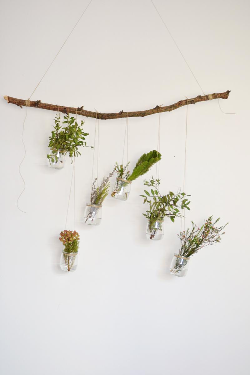 plantas-colgantes10