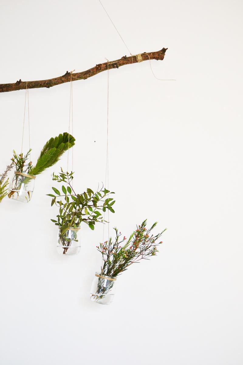 plantas-colgantes11