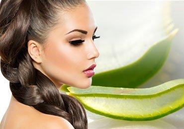 Use of Aloe vera for Hair Treatment