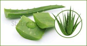 Aloe vera benefits for skin