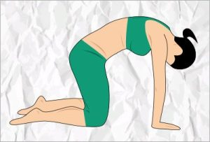 Cat yoga pose for lower back pain