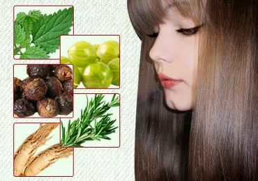 10 Best Herbs for Hair Growth