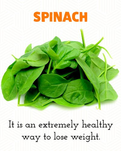Spinach to Lose Belly Fat