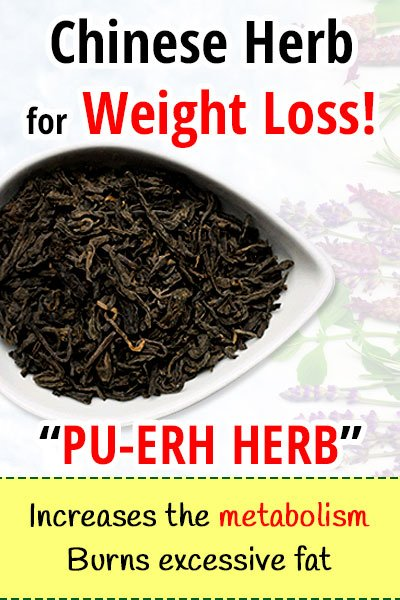 The Pu-erh Herb For Weight Loss