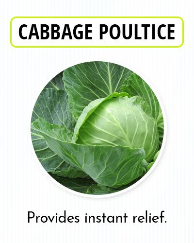 Cabbage Poultice for Kidney Pain