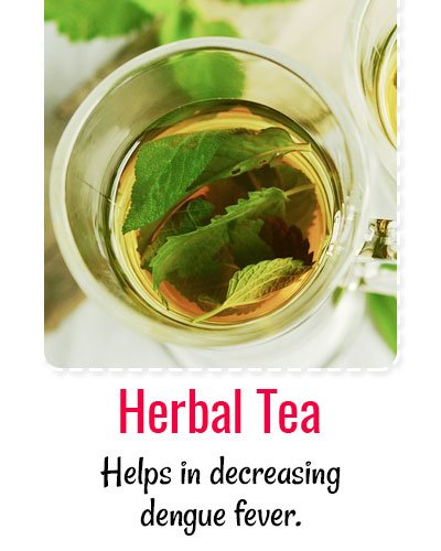 Herbal Tea For Dengue Treatment